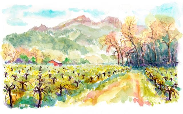 Pauline's vineyard_s